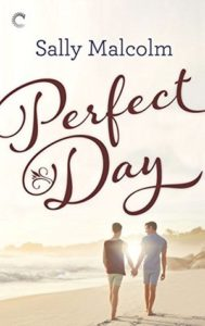 cover of perfect day by sally malcolm