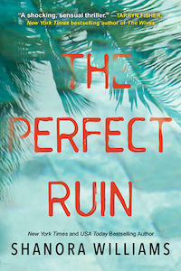 cover image The Perfect Ruin