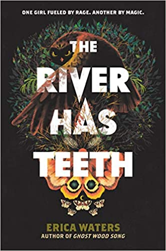 Cover of The River Has Teeth by Erica Waters