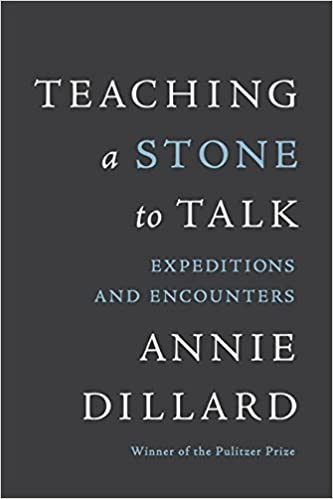 Teaching a Stone to Talk cover